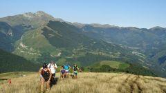 Trail calendar France Nouvelle-Aquitaine Pyrénées-Atlantiques Trailrunning race in August 2020 > Xibero trail  (Larrau)