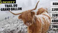 Trail calendar France   Trailrunning race in May 2020 > Trail du Grand Ballon (Le Markstein)
