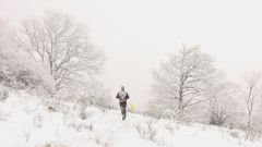 Trail calendar France   Trailrunning race in February 2020 > Trail hivernal du haut-Cantal (Condat)