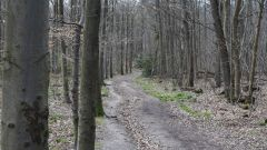 Calendrier trail France   Trail en Octobre 2017 > Trail de la Ceinture Verte (AVRILLE)