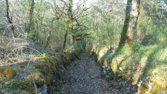 Trail calendar France Bretagne Morbihan Trailrunning race in January 2021 > Trail de la Pierre Fendue (Le Sourn)