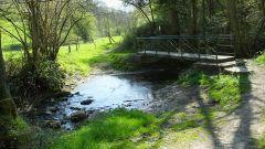 Calendrier trail Belgique - Trail en Juillet 2019 : Trail de l' Hermeton  à 5600 Romedenne