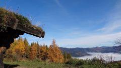Trail calendar France Bourgogne-Franche-Comté  Trailrunning race in October 2020 > BelforTrail (Giromagny)
