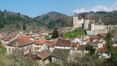 Trail calendar France Auvergne-Rhône-Alpes Puy-de-Dôme Trailrunning race in August 2019 > Eco Trail des Badins (Châteldon)