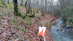 Trail kalender Frankrijk Auvergne-Rhône-Alpes Allier Trailrun in Januari 2021 > Trail Chantelle Sports Nature Gorges de la Bouble (CHANTELLE)