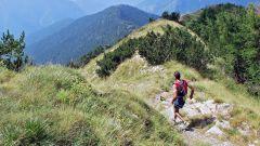 Calendrier trail France Provence-Alpes-Côte d'Azur Alpes-Maritimes Trail en Juillet 2020 > Trail du Cro (Menton)
