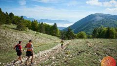 Trail calendar France Provence-Alpes-Côte d'Azur Alpes-de-Haute-Provence Trailrunning race in May 2020 > Trail de Haute Provence (Forcalquier)
