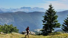 Calendrier trail France Auvergne-Rhône-Alpes Drôme Trail en Juillet 2021 > UTMC - Ultra Tour de la Motte-Chalancon (La Motte Chalancon)