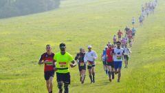 Calendrier trail France   Trail en Mai 2021 > Neuilly-en-Trail (Neuilly-en-Thelle)