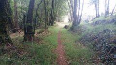 Trail calendar France Bretagne  Trailrunning race in July 2020 > Trail de Guerlesquin (Guerlesquin)