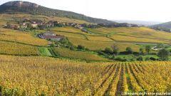Trail kalender Frankrijk Bourgogne-Franche-Comté Saône-et-Loire Trailrun in Juni 2020 > Trail des 2 Roches (Vergisson)