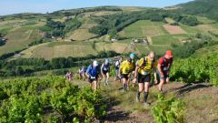 Trail calendar France   Trailrunning race in June 2020 > Trail de la Fontaine des Anes (Rivolet)