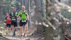 Trail calendar France   Trailrunning race in April 2021 > Courses Nature de Niederbronn (Niederbronn-les-Bains)