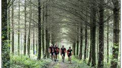 Calendrier trail France - Trail en Mai 2019 : Trail de la Terre Cuite à 16270 Roumazières-Loubert
