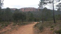 Calendrier trail France   Trail en Mars 2020 > Trail des Mange-Lamberts (Puget-Sur Argens)