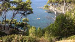 Calendrier trail France Provence-Alpes-Côte d'Azur Var Trail en Septembre 2021 > Trail du Cap Sicié (Six Fours Les Plages)