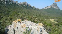 Calendrier trail France Occitanie Hérault Trail en Mai 2020 > Festa Trail Pic Saint-Loup (Saint-Mathieu-de-Tréviers)