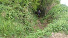 Trail kalender Frankrijk Bretagne Finistère Trailrun in Mei 2021 > Trail de l'Elorn (La Roche Maurice)