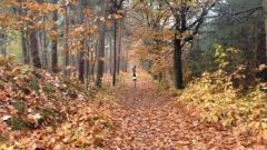 Trail calendar the Netherlands   Trailrunning race in November 2020 > Alphense Bergen Trail (Alphen Nb)
