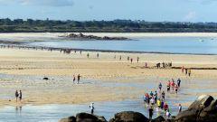 Trail calendar France Bretagne Finistère Trailrunning race in October 2021 > Trail de la Baie de Kernic (Plouescat)