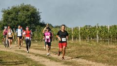 Trail calendar France Auvergne-Rhône-Alpes Allier Trailrunning race in September 2021 > Vin'Scène en Bourbonnais (Moulins)