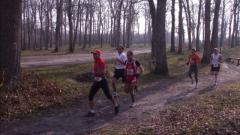 Calendrier trail France   Trail en Mars 2020 > Cabilat'trail (Borderes-sur-l'Échez)