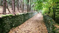 Trail kalender Frankrijk Auvergne-Rhône-Alpes Haute-Loire Trailrun in Oktober 2021 > Capito Trail (Saint-Julien-Chapteuil)