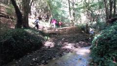 Calendrier trail Belgique - Trail en Octobre 2019 : Trail La Mesniloise à 5560 Mesnil Saint Blaise