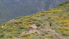 Trail kalender Frankrijk Auvergne-Rhône-Alpes Ardèche Trailrun in Juni 2021 > Trail de la Chaussée des Géants (Thueyts)