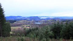 Calendrier trail France Auvergne-Rhône-Alpes Puy-de-Dôme Trail en Février 2020 > Trail des Couteliers (Saint-Rémy-sur-Durolle)