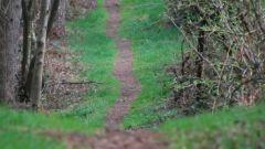 Calendrier trail Belgique   Trail en Mars 2017 > Trail des Hérissons (Irchonwelz)