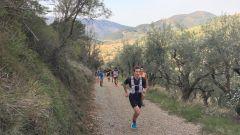 Trail calendar France Provence-Alpes-Côte d'Azur  Trailrunning race in February 2021 > Les Drailles du Lançon (Sanary-sur-Mer)