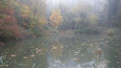 Calendrier trail France   Trail en Octobre 2020 > La Solaiz'hard (Solaize)