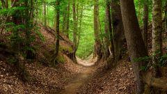 Calendrier trail Belgique   Trail en Avril 2019 > Trail de Chaumont-Gistoux (Chaumont-Gistoux)