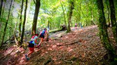 Trail calendar Belgium   Trailrunning race in July 2020 > Festival Trail Semois (Herbeumont)