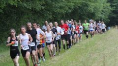 Trail calendar France Bourgogne-Franche-Comté  Trailrunning race in September 2019 > Trail des Forges Royales (Guérigny)