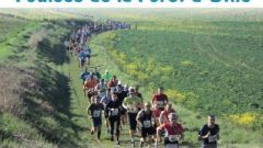 Trail kalender Frankrijk Bourgogne-Franche-Comté  Trailrun in Maart 2020 > Les Foulées de la forêt d'Othe (Joigny)