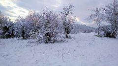 Trail calendar France Auvergne-Rhône-Alpes Drôme Trailrunning race in February 2021 > Les Foulées Upiennes l'Hivernale (Upie)