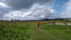 Calendrier trail Belgique   Trail en Mars 2021 > Gent Trail (GENTBRUGGE)