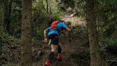 Calendrier trail France Bretagne Morbihan Trail en Septembre 2020 > Trail de Gestel (Gestel)
