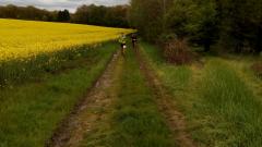 Calendrier trail Belgique   Trail en Janvier 2020 > Les givrées d'Arbespine (Arbespine)