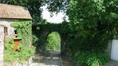 Calendrier trail Belgique   Trail en Juin 2019 > Trail de l'Hermetour (Sautour)