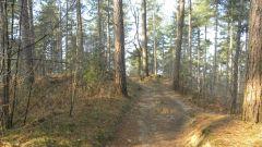 Calendrier trail Belgique   Trail en Novembre 2017 > HETRIC Trail (Lichtaart)