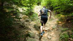 Calendrier trail France Auvergne-Rhône-Alpes Loire Trail en Mai 2020 > Trail Morgan (Sainte Croix en Jarez)