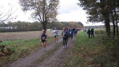Trail calendar Belgium   Trailrunning race in November 2021 > Marathon Kasterlee (Kasterlee)
