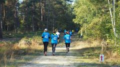 Calendrier trail France Île-de-France  Trail en Octobre 2019 > Lyrican'Trail (Larchant)