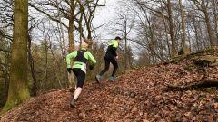 Trail kalender België   Trailrun in Februari 2021 > Trail des Moines (Ferrières)