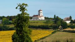 Trail kalender Frankrijk Nouvelle-Aquitaine Dordogne Trailrun in November 2019 > Montagrier Trail (Montagrier)