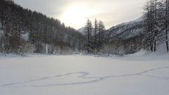 Calendrier trail France   Trail en Janvier 2020 > Trail Blanc Névache (Nevache)