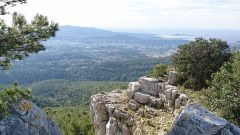Calendrier trail France   Trail en Décembre 2021 > Trail de Noel Ollioules (Ollioules)